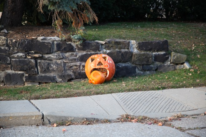 Schenley Park Pumpkin