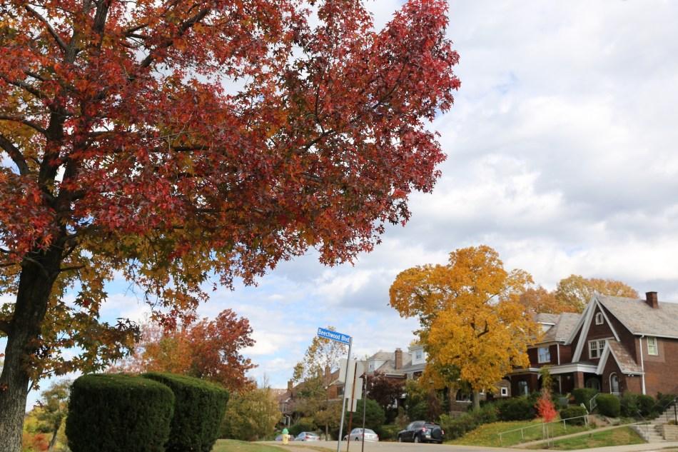 neighborhood autumn clouds