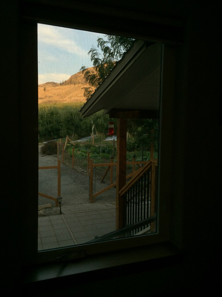 view from David's window