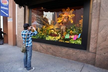 Macy's window flower show