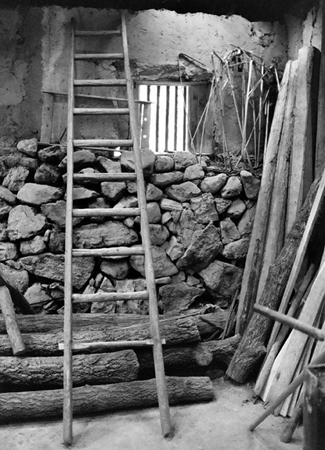 Chinese farm ladder