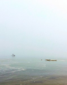 Brewster fog, Cape Cod