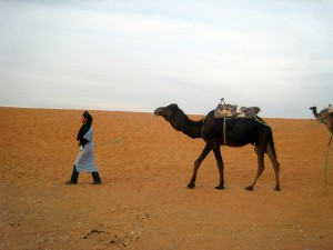 morocco-339555_1280