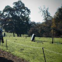 CENTRE FOR HORSEBACK COMBAT 21 10 2018 (25)