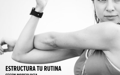 Hipertrofia para el tríceps: el método de entrenamiento.