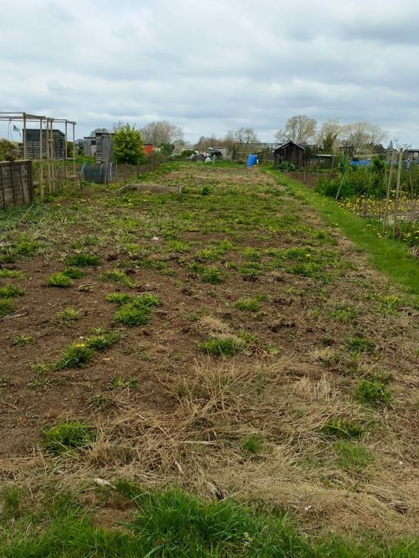 Picture of Plot 1 on the first day work commenced.