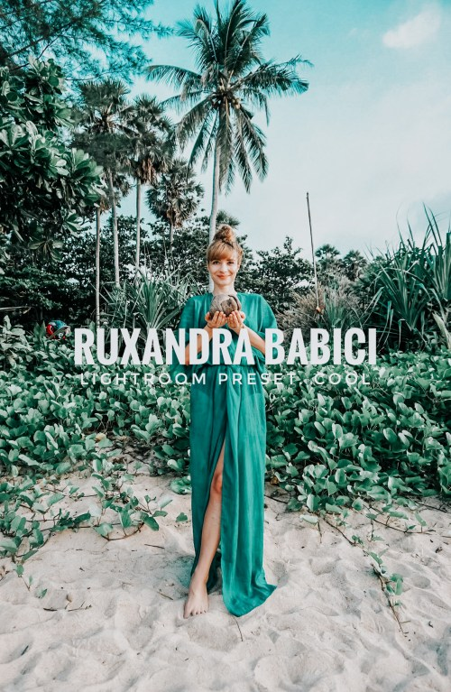 Lightroom Preset_Instagram feed_Ruxandra Babici