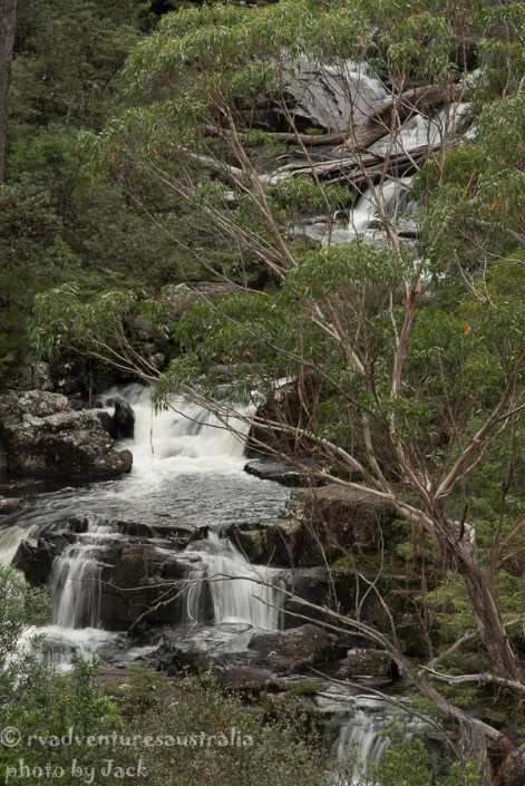 Waterfall in Barrington Tops NP