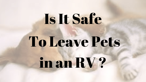 Is it Safe To Leave a Pet in an RV?