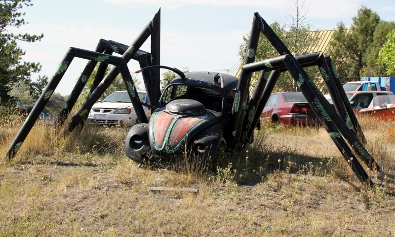 Remote Viewing Target 200616524 is the Volkswagen Bug-Spider west of Grace, Idaho