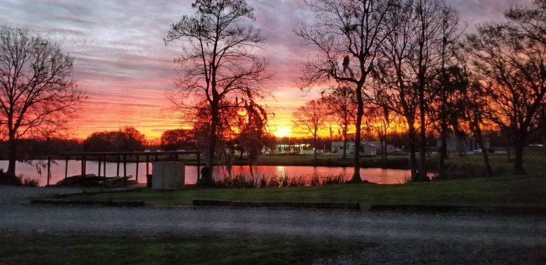 sunrise at Cypress Lake RV Resort