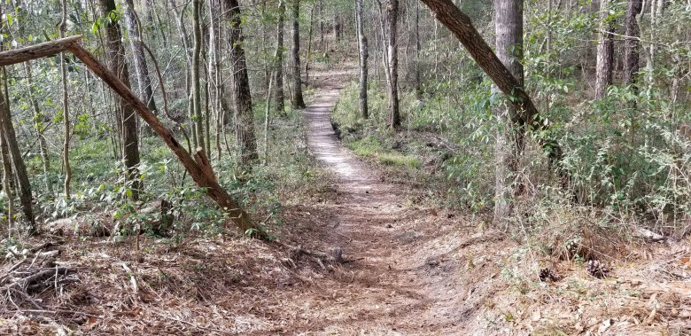 This county park has hiking trails as well as paved walking paths that meander throughout the park.