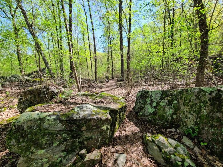 Hiking trail with rocks