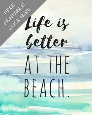 Better at the Beach