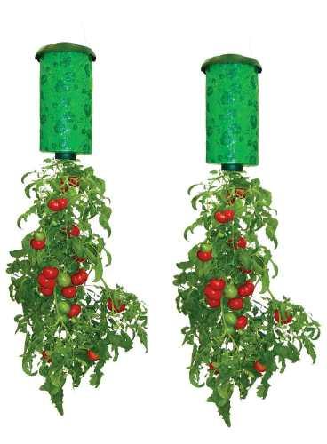 Hanging upside down planter for growing vegetables