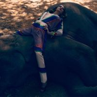 celine on an elephant