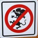 Declare War on Rodent Damage Inside RVs