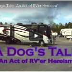 Good Samaritan RVers Save Dog from Burning Rig
