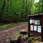 Go Camping In Green Mountain National Forest
