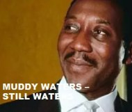 Muddy Waters  - Still Waters