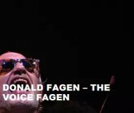 Donald Fagen - The Voice Fagen