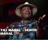 Taj Mahal  - Senor Mahal