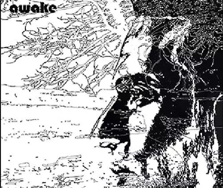 Uriel Herman – The Windmill Sessions + awake