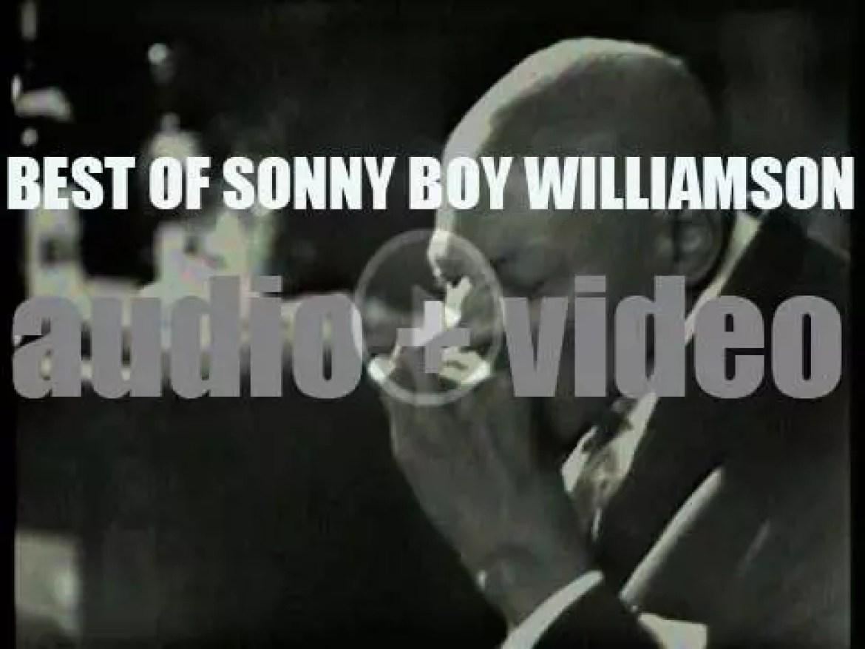 We Remember Sonny Boy Williamson. 'Sonny Boy'