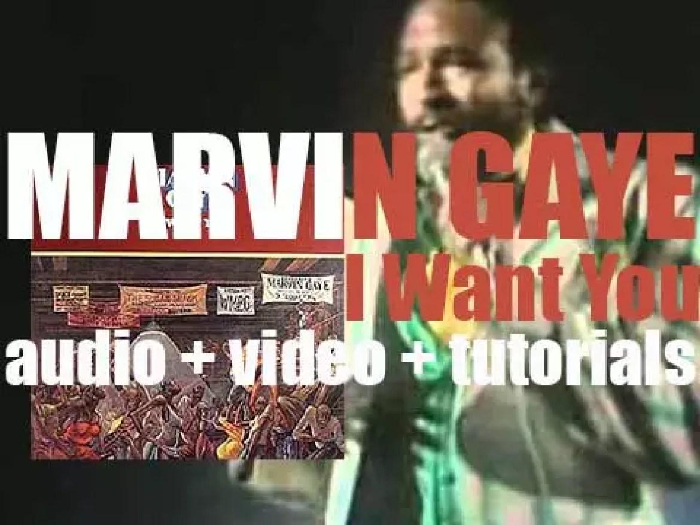 Tamla publish Marvin Gaye's thirteenth  album : 'I Want You' (1976)