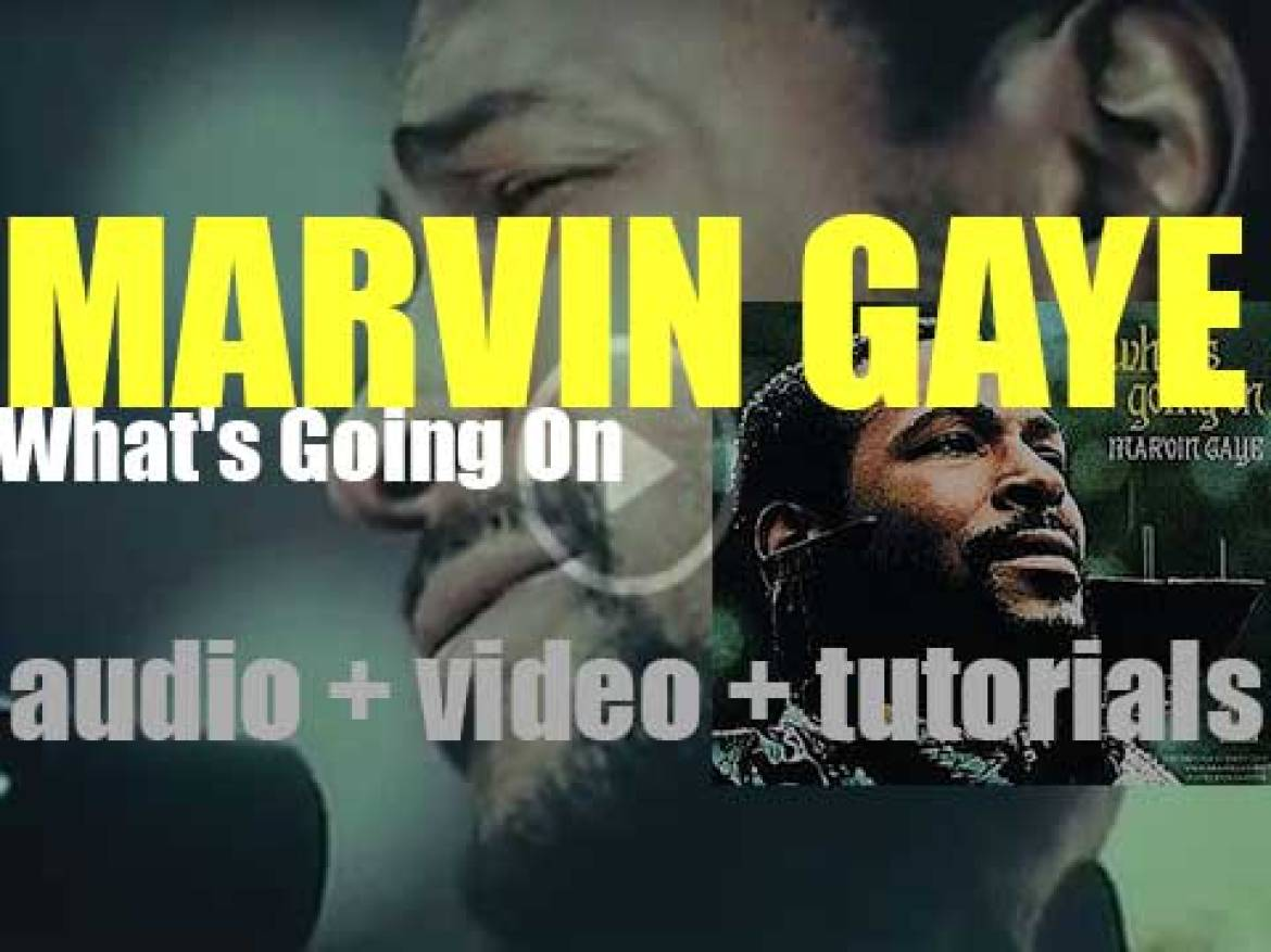 Marvin Gaye releases 'What's Going On,' his eleventh album featuring 'Mercy Mercy Me (The Ecology)' (1971)