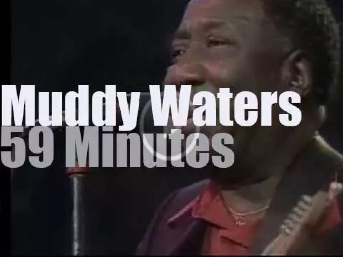 Muddy Waters plays at the first  Montreal jazz festival  (1980)