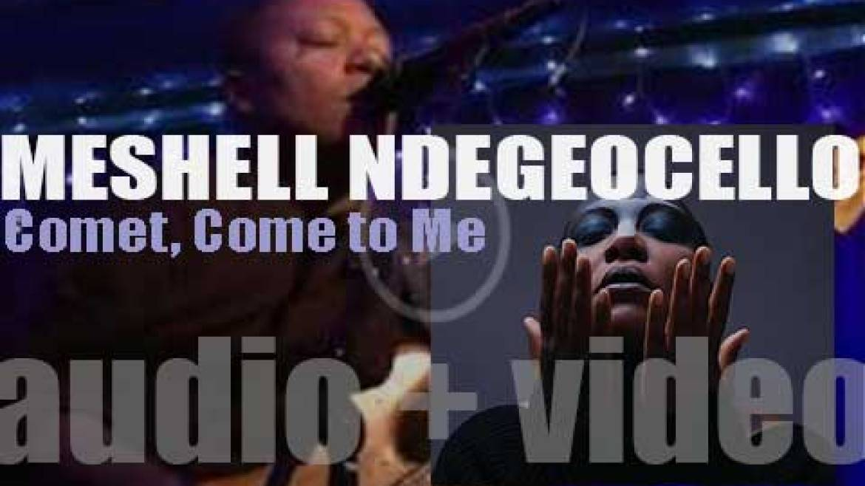 Meshell Ndegeocello releases her eleventh album 'Comet, Come to Me' (2014)