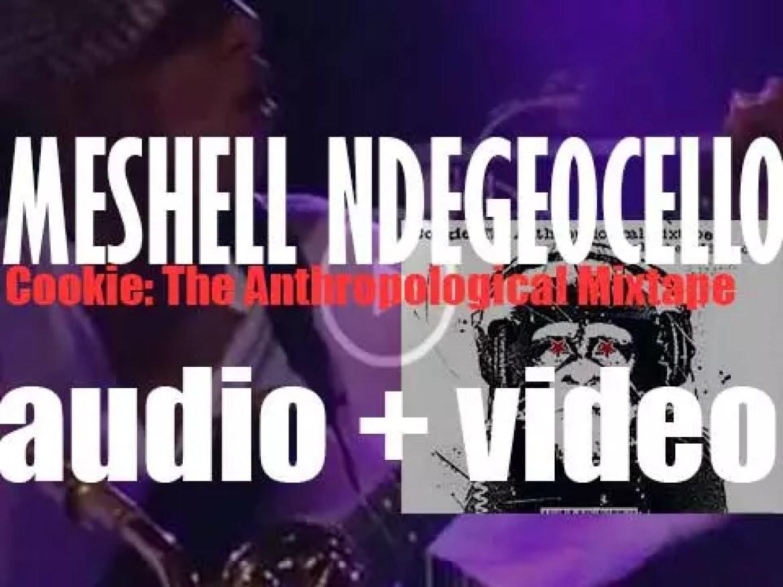 Maverick publish Meshell Ndegeocello's 'Cookie: The Anthropological Mixtape' (2002)