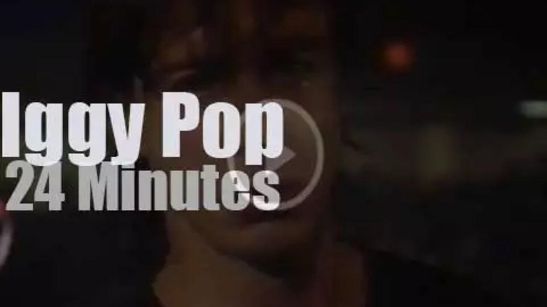 Iggy Pop  serenades Toronto (1981)