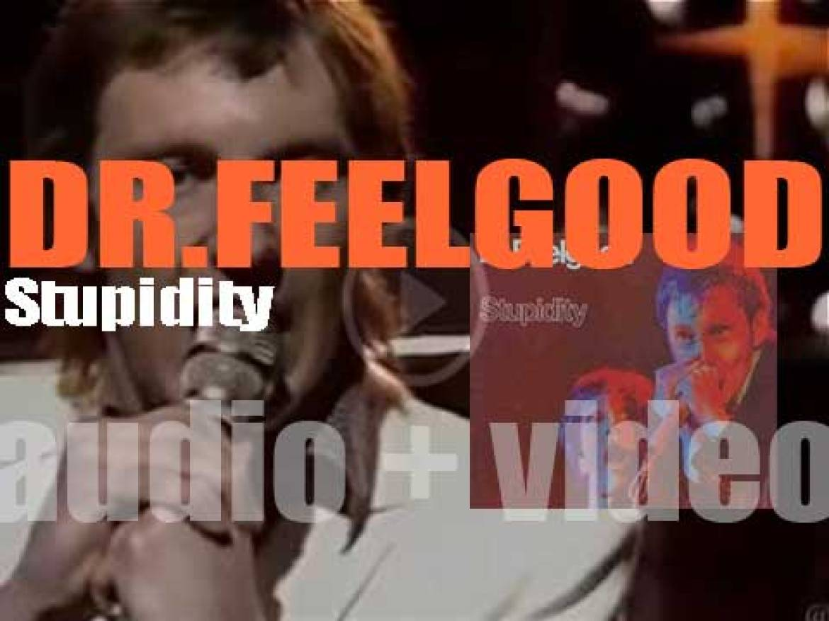 Dr. Feelgood record their third album : 'Stupidity' for United Artists (1975)