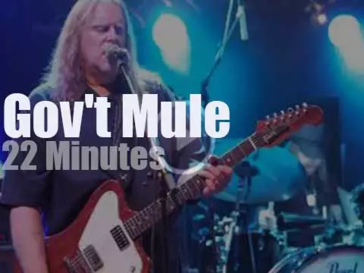 Gov't Mule attend a German festival (2013)
