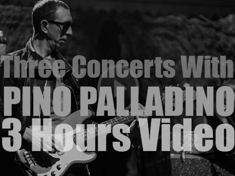 Three Concerts with Pino Palladino