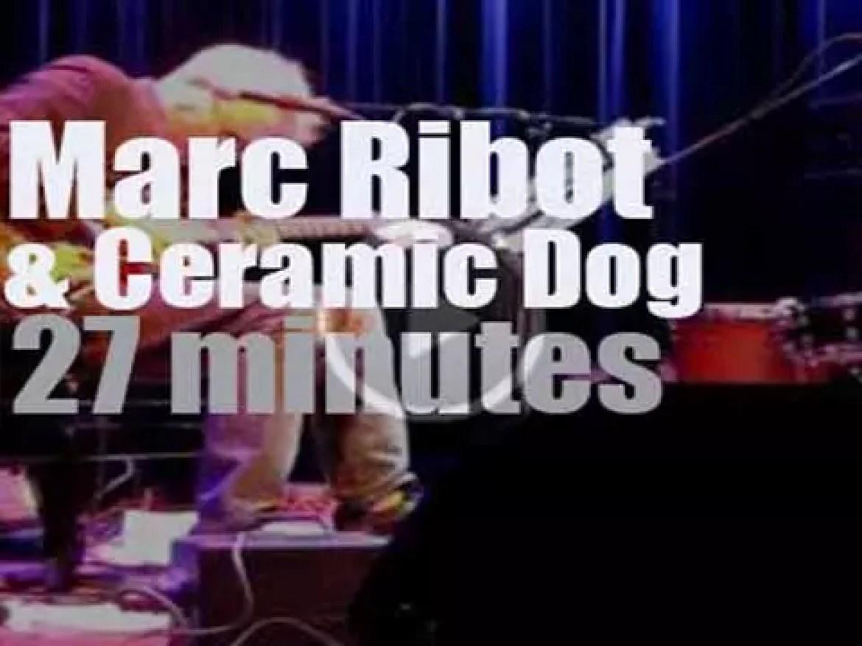 Ceramic Dog rocks Amsterdam (2013)