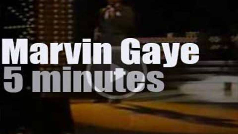 Marvin Gaye heals the Grammys (1983)
