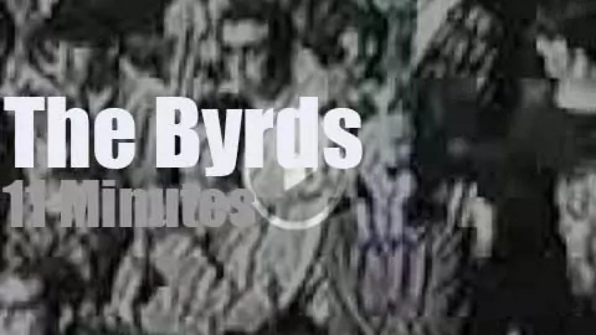 On TV today, The Byrds at 'The Big T.N.T.' (1965)