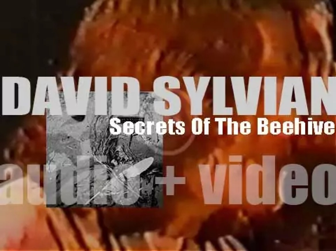 Virgin publish David Sylvian's fourth album : 'Secrets of the Beehive' co-produced with Steve Nye (1987)