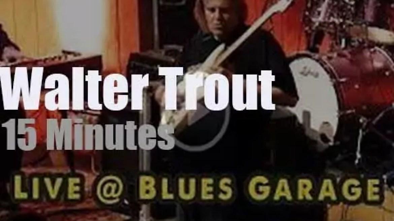 Walter Trout bluesifies Germany (2018)