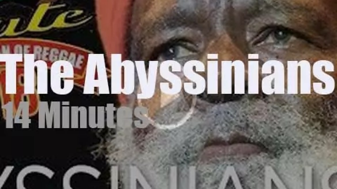 The Abyssinians perform at home (2018)