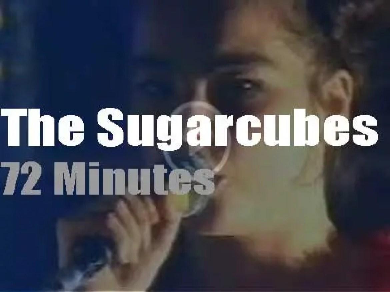 The Sugarcubes visit Manchester (1992)