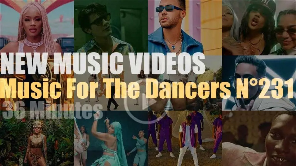 'Music For The Dancers' N°231 – New Music Videos