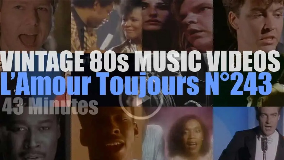 'L'Amour Toujours'  N°243 – Vintage 80s Music Videos