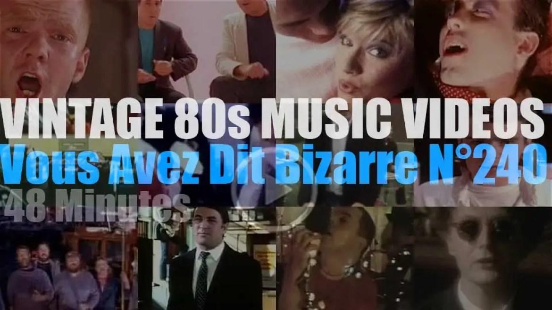 'Vous Avez Dit Bizarre'  N°240 – Vintage 80s Music Videos