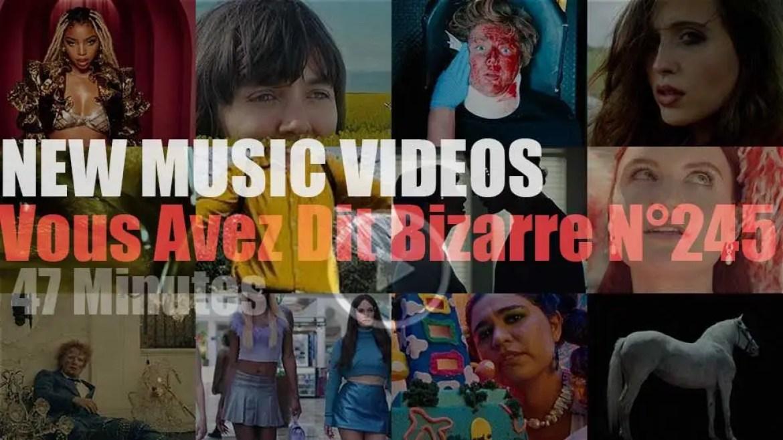 'Vous Avez Dit Bizarre'  N°245 – New Music Videos
