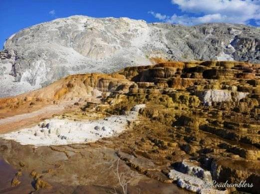 Picture of Mound Terrace at Mammoth Hot Springs in Yellowstone National Park
