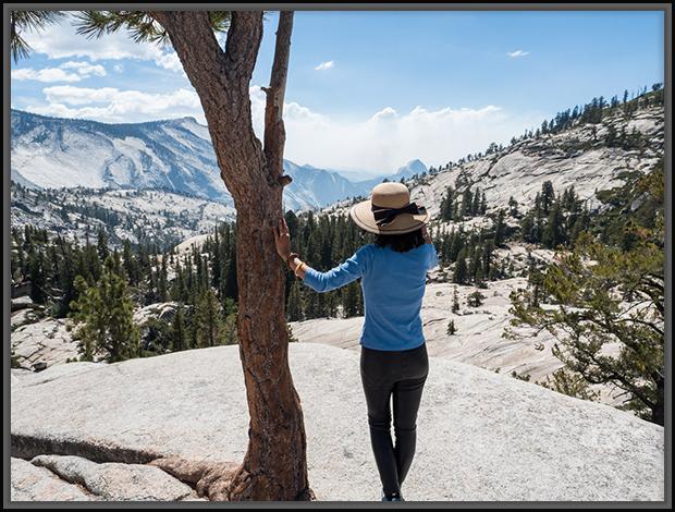 A Glimpse of Yosemite